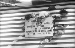 Líber Arce - UJC (partidocomunistadeuruguay) Tags: facultad odontologia arceliber pintada joven bandera orador estela acto centrodeestudiantesdeodontologia flor