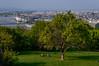 The Danube, from the park (Steve_McCaul) Tags: beginnerdigitalphotographychallengewinner