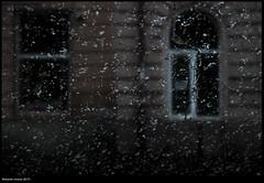 Untitled / Transylvania (buiobuione) Tags: transylvania transilvania romania sighisoara brazov sibiu bucarest buiobuione