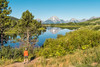 The View at Oxbow Bend (Ronnie Wiggin) Tags: theviewatoxbowbend ronniewiggin© gtnp tetons grandteton mountains snowcoveredmountains grandtetonnationalpark jackson jacksonwy jacksonhole kelly rwigginphotos ronniewiggin oxbowbend overlook panoramanikon d300 nikond300 travel landscape teatons nature outdoors usa sky field mountainrange day scenics tetonrange mountmoran mtmoran ©ronniewiggin lestroistétons thethreebreasts sunset starburst stream jh moranjunction moranwyoming clouds