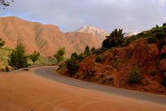 DSCF6451 (domenicomusumeci1) Tags: marocco ourika