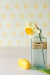 16/30: The colour of spring (judi may) Tags: april2017amonthin30pictures daffodil tulip yellow thecolourofspring bottle vintagebottle flowers stilllife tabletopphotography table wood pattern canon7d