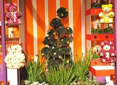 Macy's Flower Show (Brule Laker) Tags: chicago illinois macys marshallfields stores flowers olympusom downtown