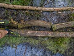 Crossing the waters (Jan R. Ubels) Tags: running netherlands nederland anderen drenthe drentscheaa scheebroekerloop water bridge brug hardlopen runningshoes run
