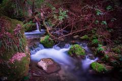 sendero río Majaceite (maria alguacil) Tags: efecto seda agua rio cascada naturaleza bosque