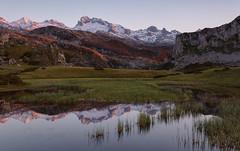 Lagos Covadonga. Lago Ercina (GorkaZarate) Tags: lago ercina picos europa covadonga asturias principado parque nacional cantabria españa nikon d7100 reflejo landscape paisaje lake nature naturaleza alavavision riojafoto