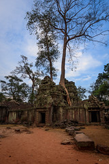 Image from the Ta Phrom Temple in Angkor, Cambodia (Kenneth Back) Tags: jungle morning canon5dsr sunrise siemreap canon landscape colors ancient cambodia angkorwat temple taphrom krongsiemreap siemreapprovince kh