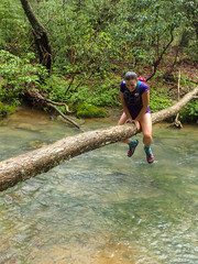 Cumberland Trail Run (10 of 34) (aaron_rinn) Tags: tenessee tree toppers team challenge 2017 cumberland trail