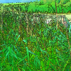 on the bank of the pond II (j.p.yef) Tags: peterfey jpyef yef digitalart pond green reed water nature