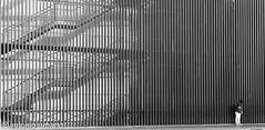 Levedad ante  lo inmenso (antonio urbano marmol) Tags: fotografíacallejera arquitectura perspectiva sevilla facultaddederechosevilla