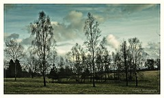 trees and clouds (friedrichfrank1966) Tags: contrast nature light rahmen trees heaven weisabgleich