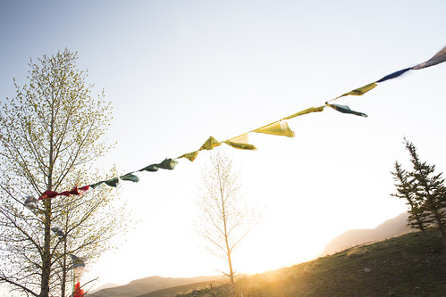 Mountainfilm Flags - Photo Credit Nick Wolcott