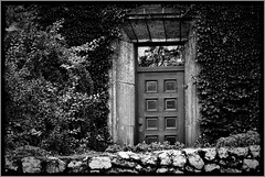 mystery (Violen's photography) Tags: door old reflection castle glass overgrown vines poland polska wawel ivy krakw cracow blackwhitephotos