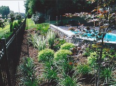 Landscape - Garden