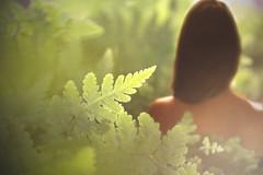 Secrets (Emma et la photographie) Tags: light portrait color nature canon nude photography photographie artistic nu lumière femme canoneos feuilles artisticphotography poésie buisson buissons nuartistique womanportrait feuillesvertes artisticportrait photographieartistique portraitfemme canoneos600d