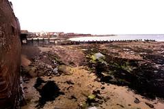268-33L (Lozarithm) Tags: film coastline dunbar lothian 1935 pentaxme tokinaaf1935mmf3545