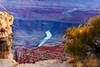 USA West (Edi Bähler) Tags: arizona coloradoriver fluss gewässer grandcanyonnationalpark hotpick landscapeusa landschaft natur pflanze usa unitedstatesofamerica landscape nature plant river waters grandcanyon vereinigtestaaten nikond3 70200mmf28