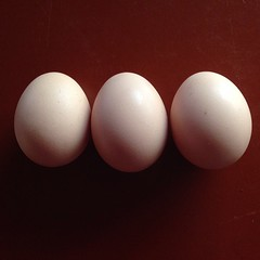 """Three little eggs from school... • <a style=""""font-size:0.8em;"""" href=""""https://www.flickr.com/photos/61640076@N04/10448638585/"""" target=""""_blank"""">View on Flickr</a>"""