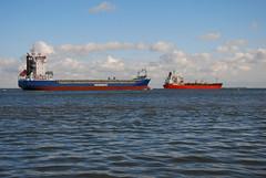 Namai and Bow Hector (larry_antwerp) Tags: netherlands ship vessel schelde schip namai wagenborg odfjell walsoorden 9363493 nisshinshipping 9155913