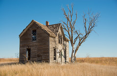 Spooky House near Marquette, Kansas (Ruthie Kansas) Tags: house tree fall abandoned spooky vacant 2013