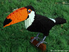 "LEGO Toco Toucan • <a style=""font-size:0.8em;"" href=""http://www.flickr.com/photos/44124306864@N01/10800471144/"" target=""_blank"">View on Flickr</a>"