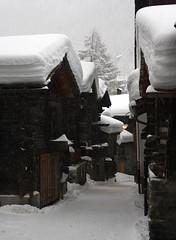 It's Snowing, Zermatt, Switzerland (South 11) Tags: snow snowing zermatt