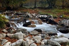 Cascade sur le Riberot - Pyrénées ariègeoises (lyli12) Tags: france nature automne nikon eau cascade pyrénées ariège ruisseau midipyrénées poselongue d7000