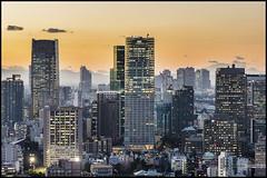 Eastern metropolis (Sunbound) Tags: city urban yellow japan skyscraper buildings tokyo nikon asia metropolis twillight