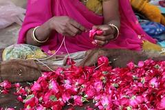 Les roses de Pushkar (Cathy Le Scolan-Quéré Photographies) Tags: pink flowers india rose fleurs collier hands women indian femme bijoux bracelets pushkar mains sari rajasthan inde pétales indienne