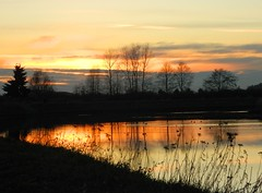 The turning point in the process of growing up, is when you discover the core of strength within you, that survives all hurt. (careth@2012) Tags: sunset lake reflection silhouette landscape nikon scenery britishcolumbia visionaryartsgallery visionaryartsgalleryplatinumgold visionaryartsgalleryelite