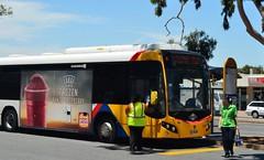 Water only (railfan3) Tags: hot bus public water buses bottles transport australian january free australia marion adelaide sa southaustralia metropolitan interchange heatwave 720 2589 adelaidemetro metroadelaide