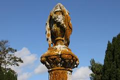 shrouded vase (Leo Reynolds) Tags: cemetery canon eos iso100 7d f80 42mm 0003sec hpexif leol30random xleol30x xxx2014xxx