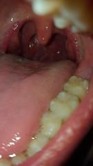 Teeth (vorewolf98) Tags: teeth mouth drool vore mawshot tongue interest