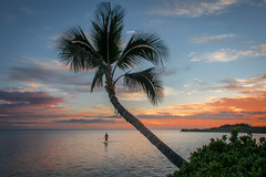 Molokai Sunset (helenehoffman) Tags: sunset palmtree paddleboard ocean hawaii pacific molokai beach sky sea tropical water