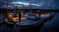 Fraser lights (Christie : Colour & Light Collection) Tags: kanakalanding mightyfraserriver fraser river fraserriver nightphotography nightlighting glow bluehour nightfall yacht boats boat reflections lights romance romantic moored mooring calm water sky night