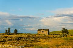 NT3.0033-CW1605618_38688 (LDELD) Tags: palouse sprague washington unitedstates us abandoned farm house old