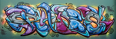 bones (Greg Rohan) Tags: graffitiart graffiti graff urbanwalls urbanphotography urbanart urban spraycanart spraypaintart aerosolart streetphotography photography paintedstreetwalls paintedstreetart artist artwork art arte 2017 d7200