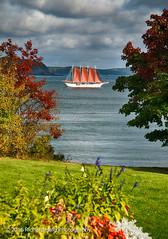 Schooner Margaret Todd (RichHaig) Tags: schooner margarettodd water ship landscape nikonafsnikkor2412014ged ocean mtdesertnarrows acadianationalpark me mdi nikond800 richhaig maine gitzotripod barharbor