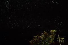 """La """"circumpolar"""" que miran los nísperos (TEVëR) Tags: garafía lapalma canarias airelibre paisaje nocturna cielo circumpolar estrellas iluminación olyomdem10ii"""