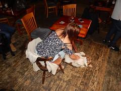Tickled Bailey (deltrems) Tags: pub bar inn tavern hotel hostelry house restaurant pumpandtruncheon pump truncheon blackpool lancashire fylde coast bailey pet dog welsh border collie