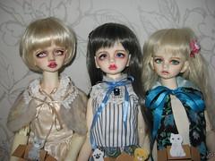 IMG_9525 (IIRRIIshka) Tags: dim doll bellosse dimbellosse