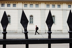 Guard of Honour (Ivan Rigamonti) Tags: streetphotography zurich outdoors man