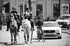 Traffic © Inge Hoogendoorn (ingehoogendoorn) Tags: denhaag buitenhof mcdonalds streetphotography straatfotografie streetphoto horse horses paard paarden fietser bike dutchbikes car cars dutchbike