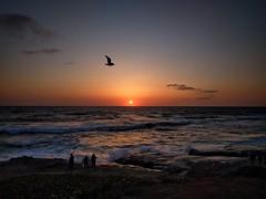 Bird Rock Sunset. (isaacullah) Tags: