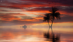 Lost in paradise... (Explored) (Kerriemeister) Tags: composite imagination creative sunset reflection silhouettes trees palms boat rowing colour fantasy paradise digital art dreamlike mist water photomanipulation