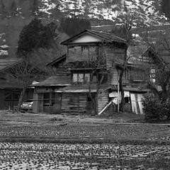 Shack (Mikey Down Under) Tags: ogimachi village japan gifu prefecture shirakawago historic world heritage site japanese thatch building farm houses home april spring roof honshu blackandwhite bw old shack gessho style