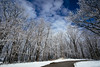 Snow [03.19.17] (Andrew H Wagner | AHWagner Photo) Tags: canon eos 5d3 1635l 1635mm f4 f4l is usm 5dmk3 5dmkiii 5dmarkiii 5dmark3 ultrawideangle wideangle nature trees road blue sky white winter snow landscape outdoors explore exploration exploring ice frozen