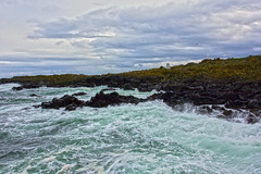 Isle of May 23 April 2016-0080.jpg (JamesPDeans.co.uk) Tags: landscape isleofmay greatbritain northsea prints for sale coast waves firthofforth unitedkingdom rough fife scotland britain sea eastneuk wwwjamespdeanscouk gb digital downloads licence man who has everything landscapeforwalls europe uk james p deans photography digitaldownloadsforlicence jamespdeansphotography printsforsale forthemanwhohaseverything