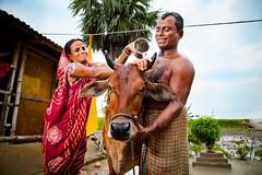 (unicefindia) Tags: animal bathing family india men ruralarea women