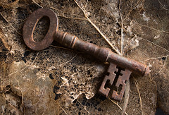 old key 01 apr 17 (Shaun the grime lover) Tags: leaves rusty texture key skeletal tabletop stilllife old forgotten